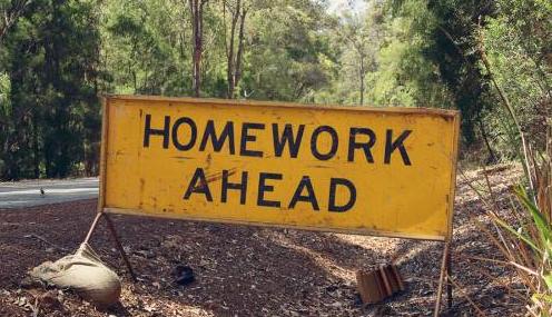 Pro homework article